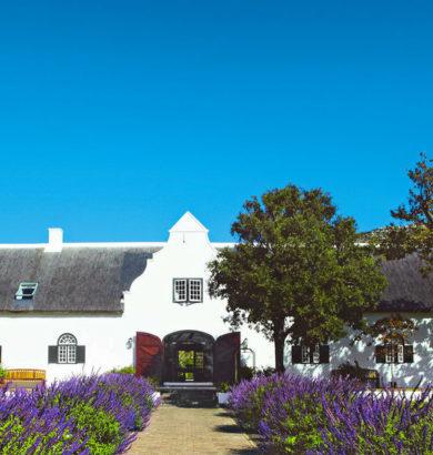 Golfreisen: Steenberg Hotel Constania Kapstadt Südafrika